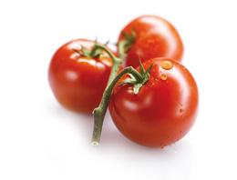 شراء Tomates