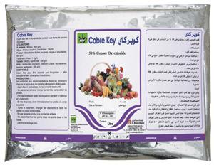 شراء Fongicide (COBRE KEY) - (Cuivre Métal)