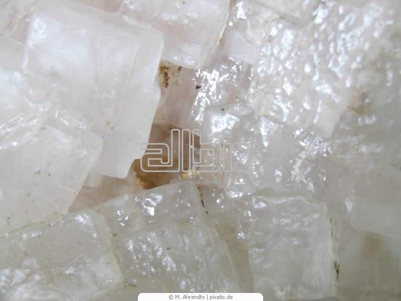 شراء Bloc de sel pour animaux