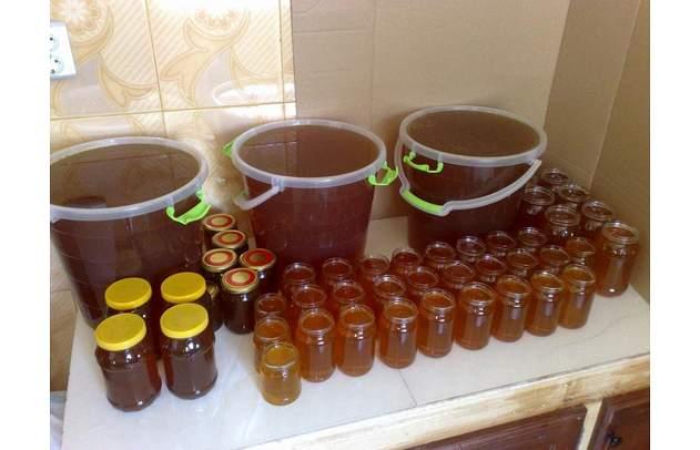 شراء الزهراء لبيع العسل