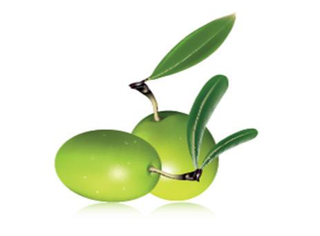 شراء Organic Olive Oil, Max acidity 0,5 % (Carthago)