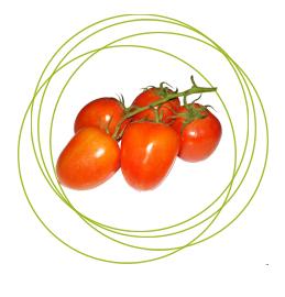 شراء Tomate