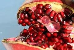 Grenade (fruit)
