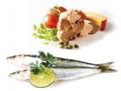 Conserves de poisson(sardines, de thon et de maquereau)