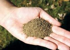 Engrais écologiques