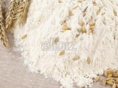 دقيق القمح
