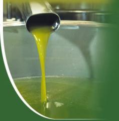 Extra Virgin Olive Oil in PET Bottles Marasca