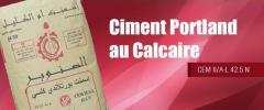 Ciment portland à partir de 56 euros
