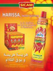 Harissa- tube