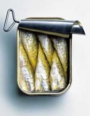 La Sardine en Conserve