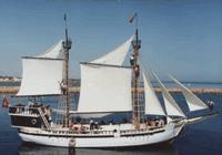 Navire pour Plaisance touristique