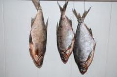 Le poisson salé
