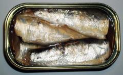 Sardines conservés