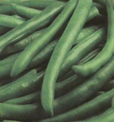 Haricots verts entiers
