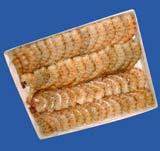 Crevette blanche (La monoceros)