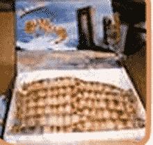 Congélation de poissons et fruits de mer: Crevettes