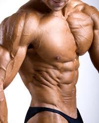 طلب Musculation